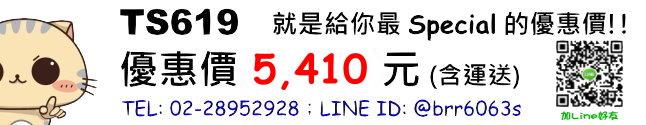 price-TS619